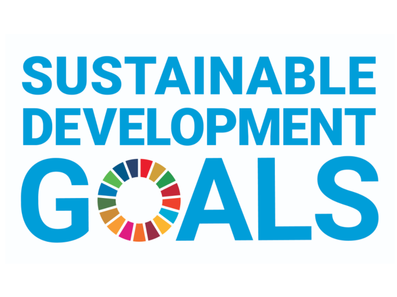 E SDG logo without UN emblem square CMYK